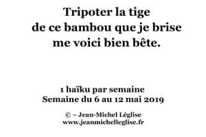 Semaine-du-6-au-12-mai-2019