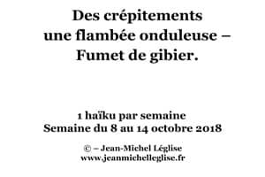 Semaine-du-8-au-14-octobre-2018