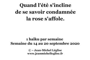 Semaine-du-14-au-20-septembre-2020