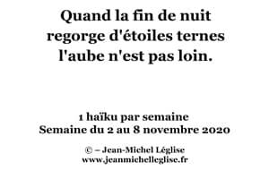 Semaine-du-2-au-8-novembre-2020