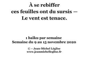 Semaine-du-9-au-15-novembre-2020